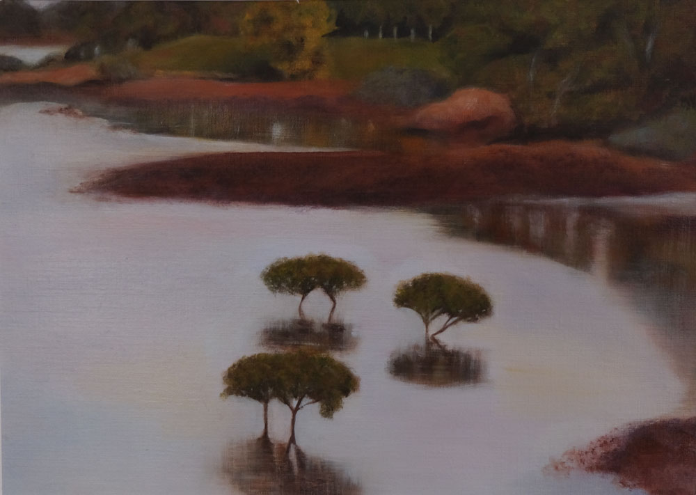 Claire Thomas - Mangroves