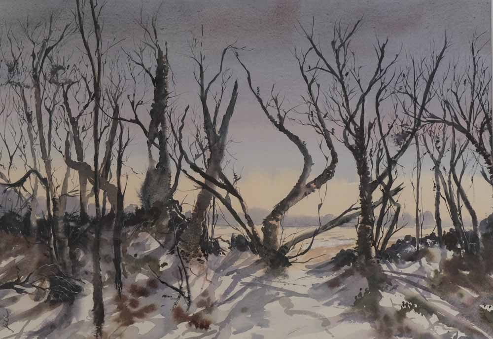 Jill Rogers - Burnt Banksias