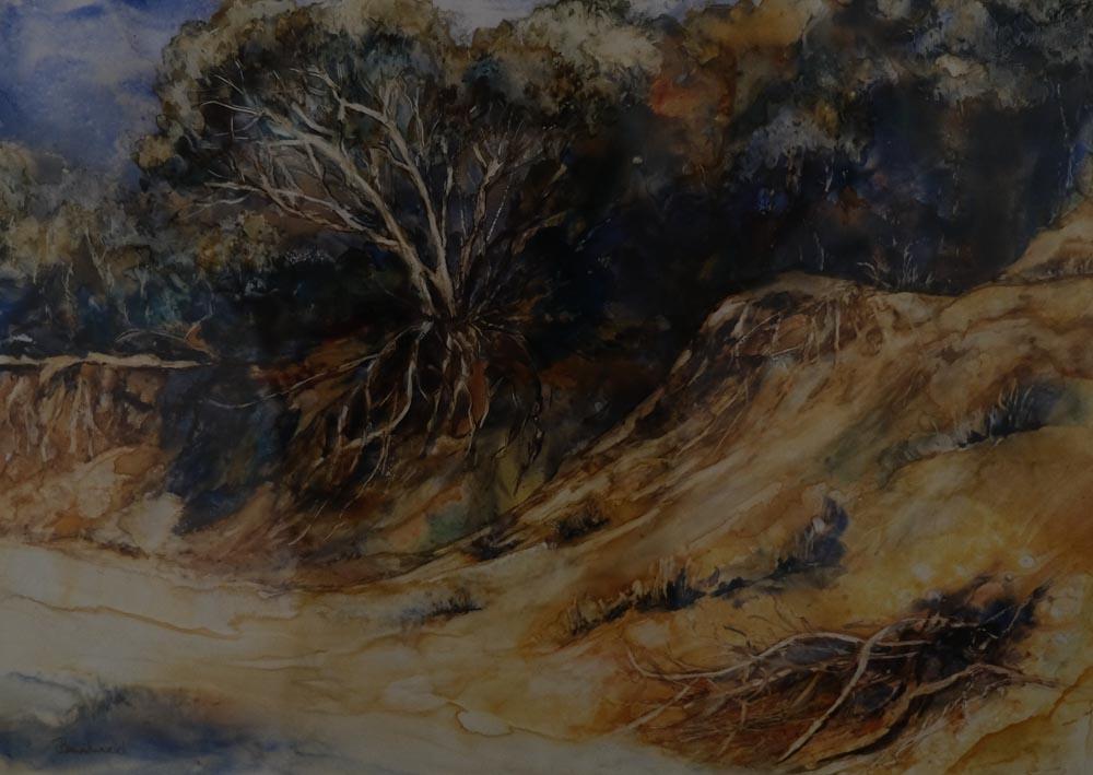 Joy Brentwood - Erosion, Cape Woolamai