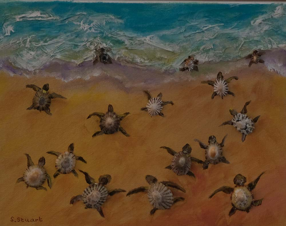 Sheryl Stuart - Hatchlings